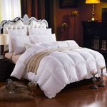 Down Comforter Reviews